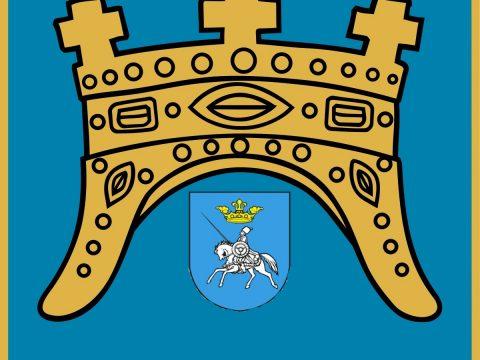sinj logo